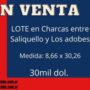 Lote en Venta en Charcas entre Saliquello y Los adobes