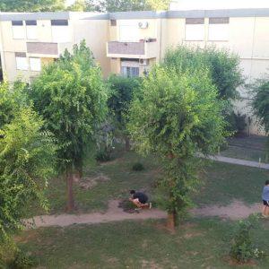 Departamento de 3 dormitorios en VENTA Barrio Rosendo Lopez – Patagones 840